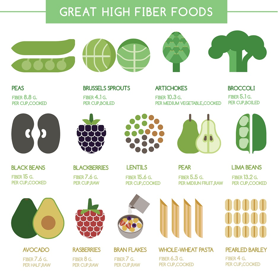 high fiber food infographic - how to lose weight fast without working out